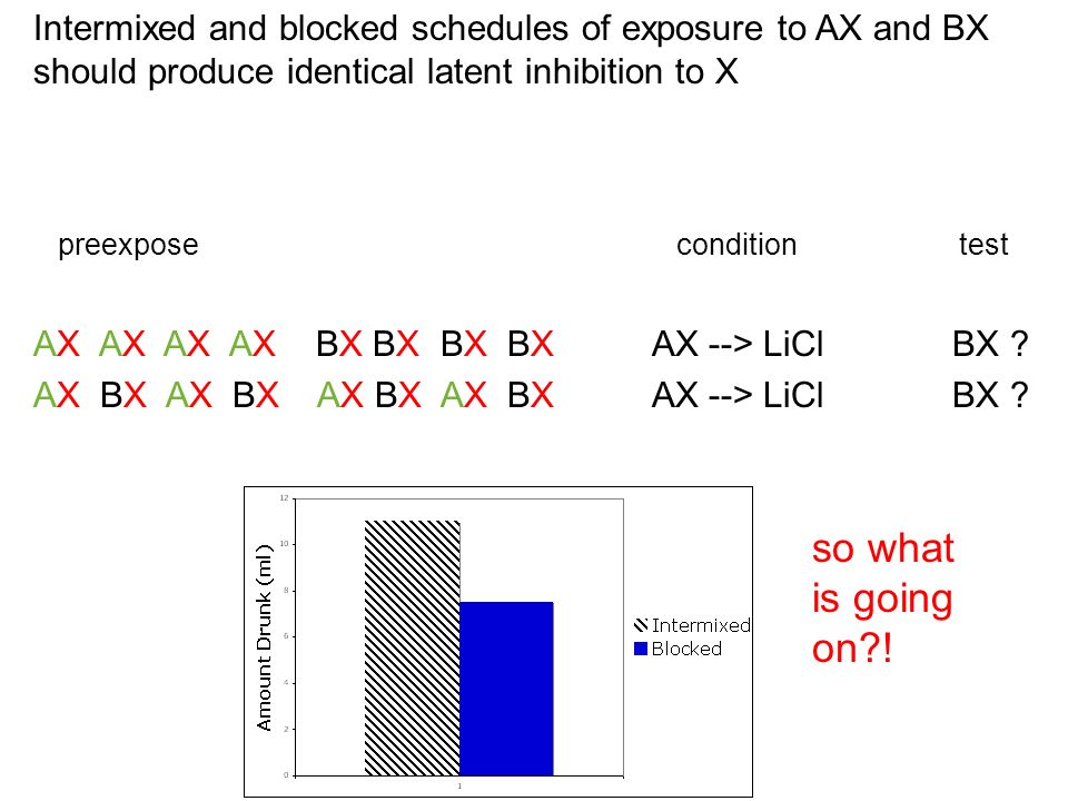 Intermixed and blocked schedules of exposure to AX and BX should produce identical latent inhibition to X...