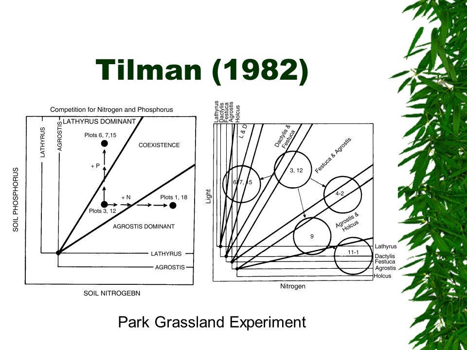 Tilman (1982) Park Grassland Experiment