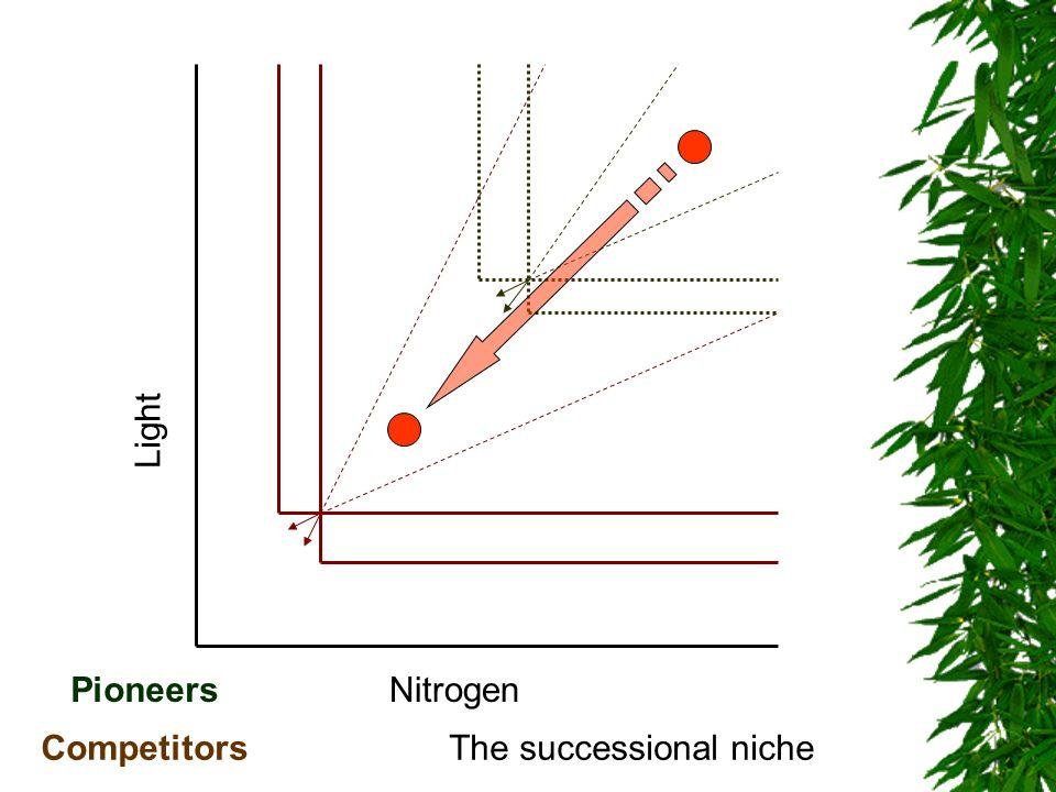Nitrogen Light Pioneers CompetitorsThe successional niche