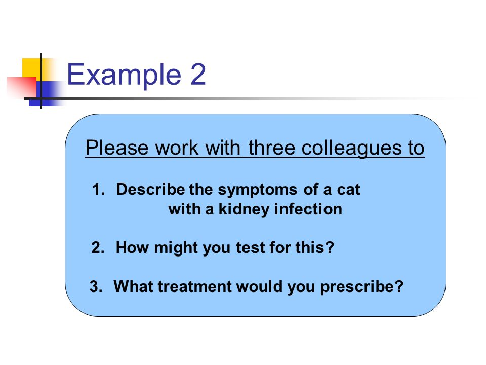 Example 2 Please work with 2 colleagues to List the three most important points from the lecture. Why have you selected these points Please work with