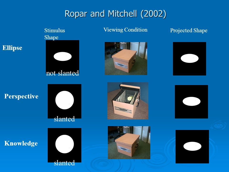 Ropar and Mitchell (2002) slanted Perspective slanted Knowledge not slanted Ellipse Stimulus Shape Projected Shape Viewing Condition