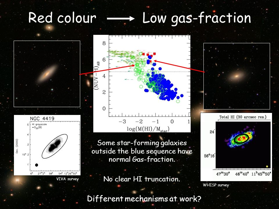 Red colour Low gas-fraction Some star-forming galaxies outside the blue sequence have normal Gas-fraction.