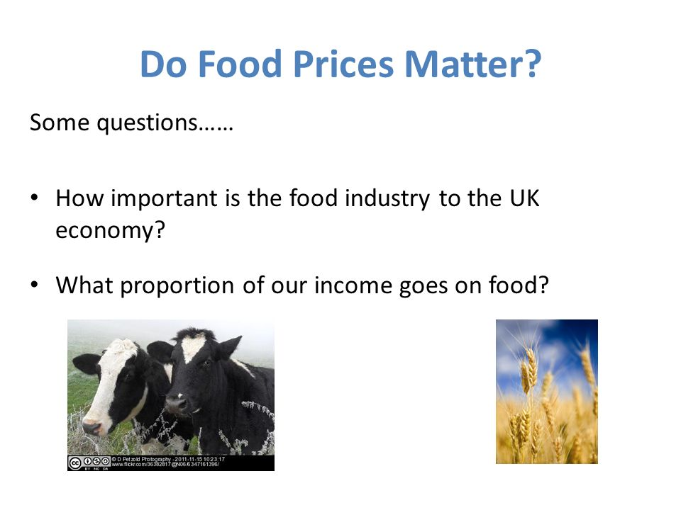 Do Food Prices Matter? Some questions…… How important is the food industry to the UK economy? What proportion of our income goes on food?