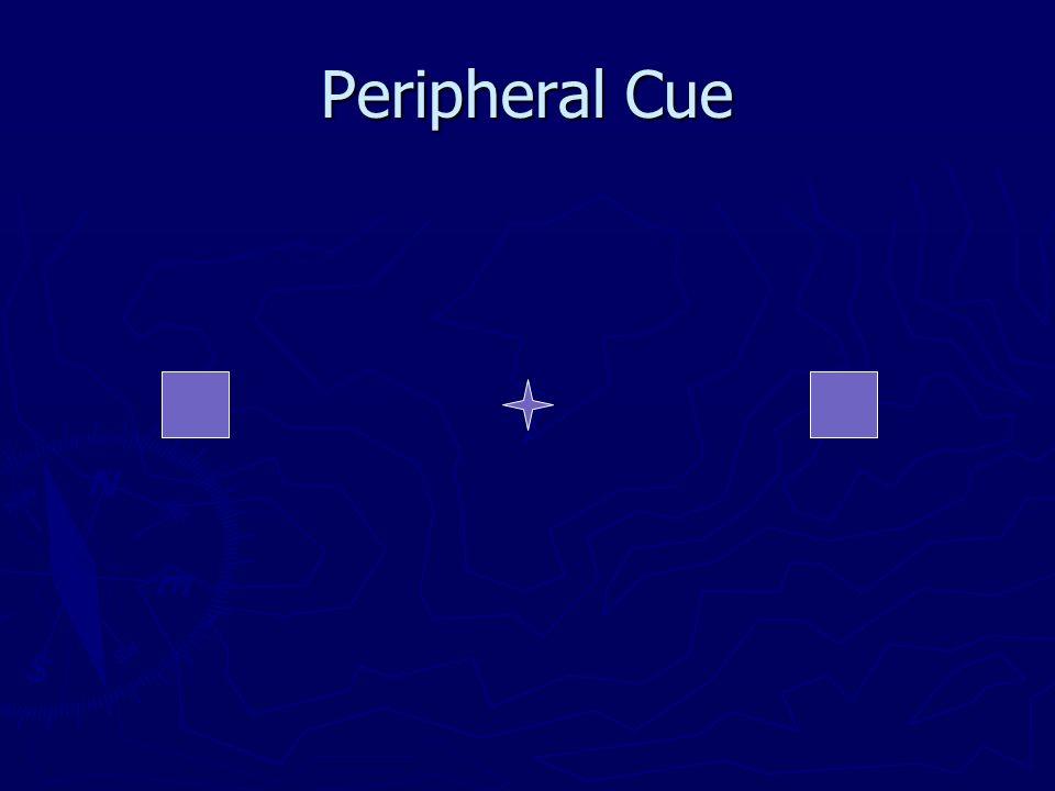 Peripheral Cue