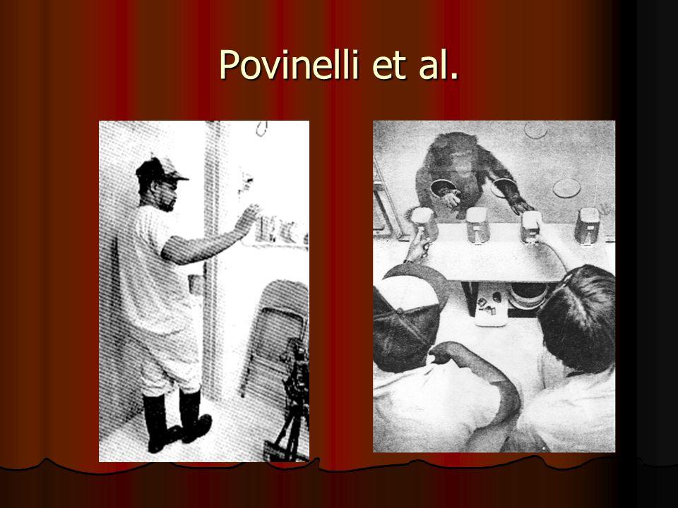 Povinelli et al.