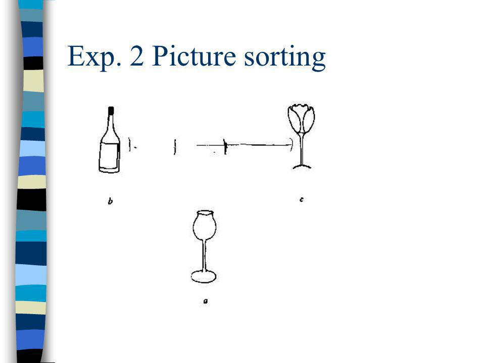 Exp. 2 Picture sorting