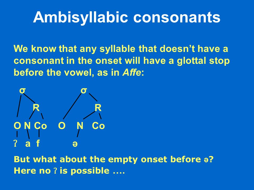 Ambisyllabic consonants We know that any syllable that doesnt have a consonant in the onset will have a glottal stop before the vowel, as in Affe: σ R R O N Co ʔ a f ə But what about the empty onset before ə .