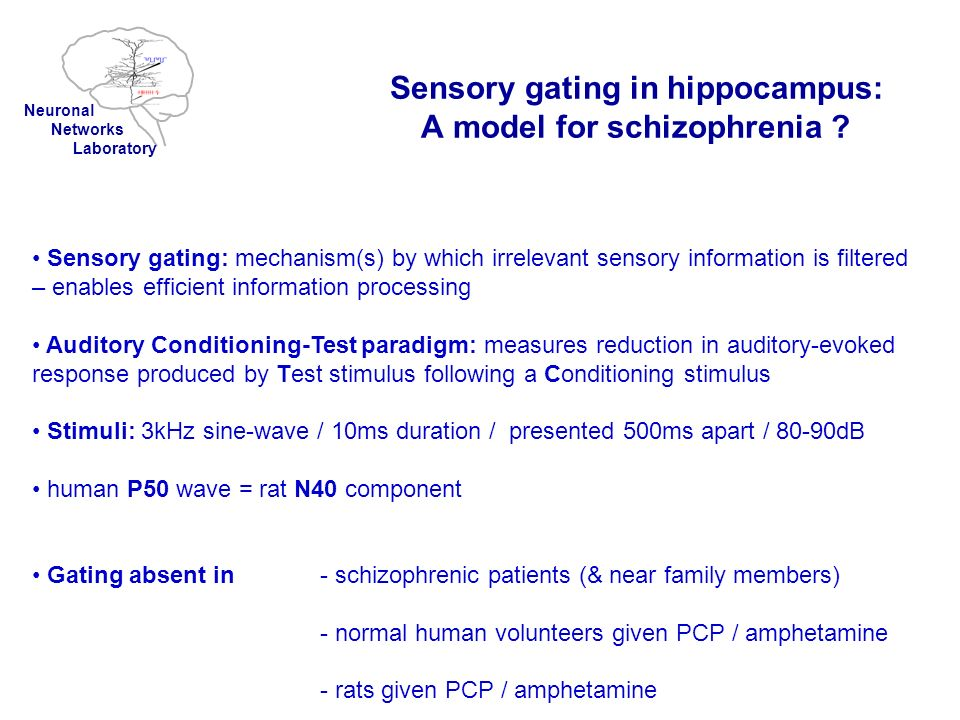 Sensory gating in hippocampus: A model for schizophrenia ? Sensory gating: mechanism(s) by which irrelevant sensory information is filtered – enables