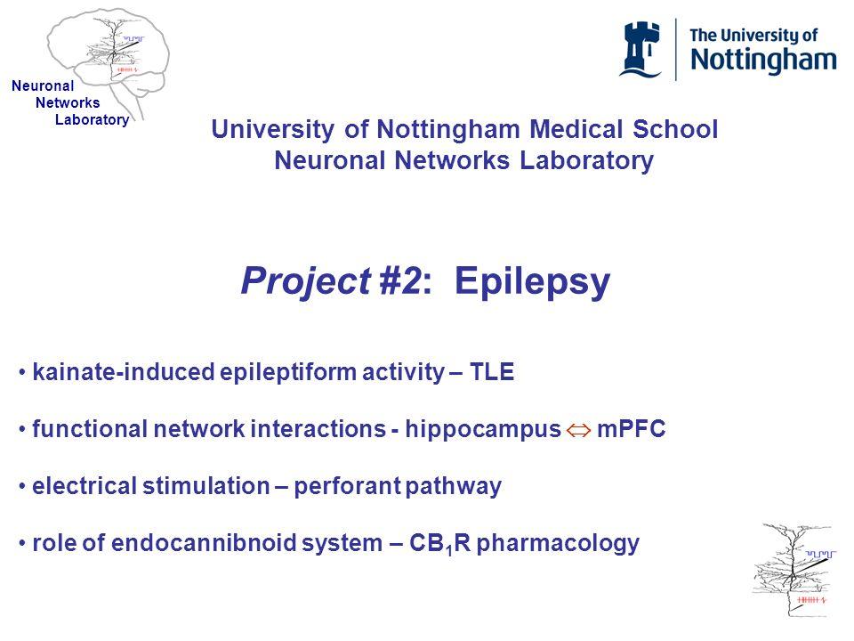 University of Nottingham Medical School Neuronal Networks Laboratory Project #2: Epilepsy kainate-induced epileptiform activity – TLE functional netwo