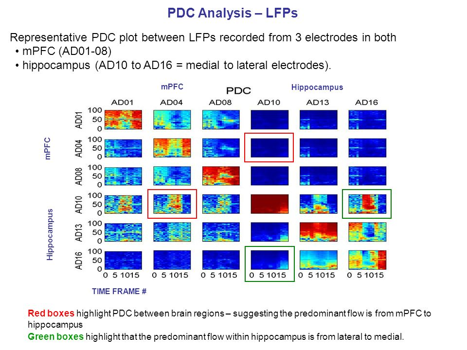 PDC Analysis – LFPs Representative PDC plot between LFPs recorded from 3 electrodes in both mPFC (AD01-08) hippocampus (AD10 to AD16 = medial to later