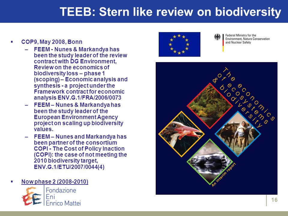 16 TEEB: Stern like review on biodiversity COP9, May 2008, Bonn –FEEM - Nunes & Markandya has been the study leader of the review contract with DG Env