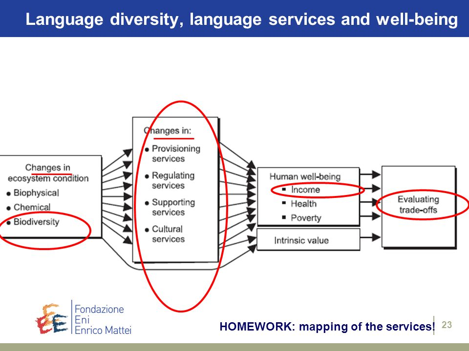 23 HOMEWORK: mapping of the services! Language diversity, language services and well-being