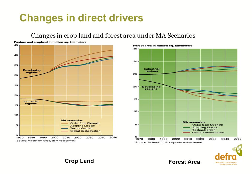 Crop Land Forest Area Changes in crop land and forest area under MA Scenarios Changes in direct drivers
