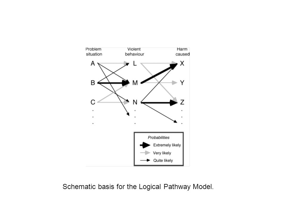 Schematic basis for the Logical Pathway Model.