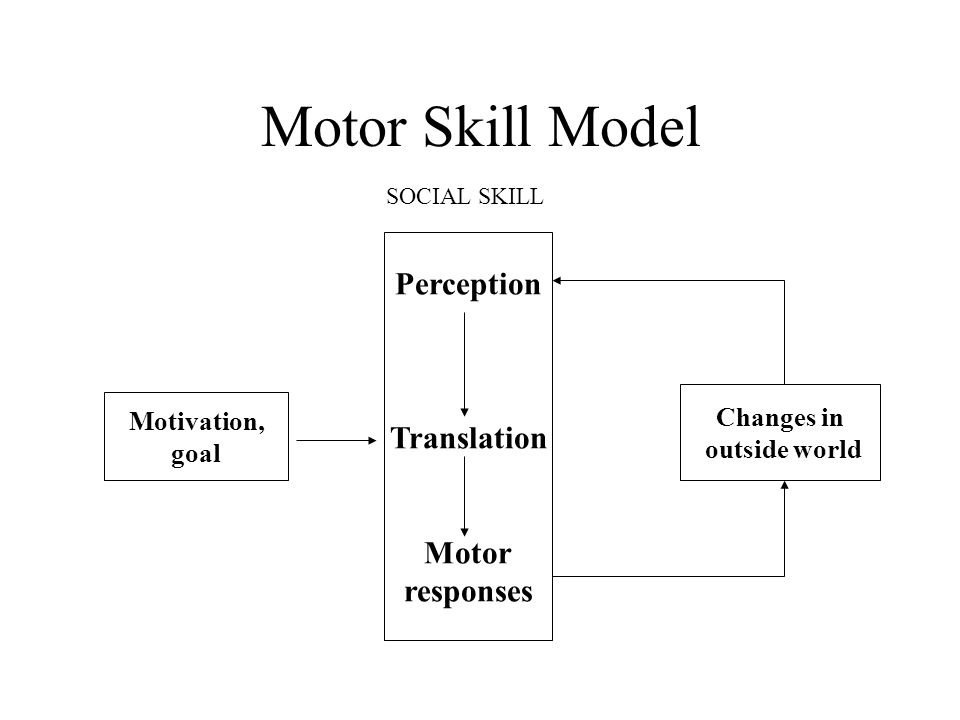 Motor Skill Model Perception Translation Motor responses Changes in outside world Motivation, goal SOCIAL SKILL