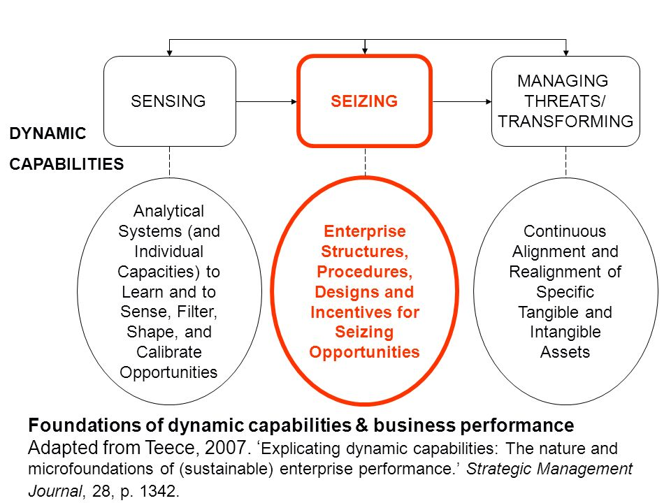 DYNAMIC CAPABILITIES SENSING SEIZING MANAGING THREATS/ TRANSFORMING Analytical Systems (and Individual Capacities) to Learn and to Sense, Filter, Shap