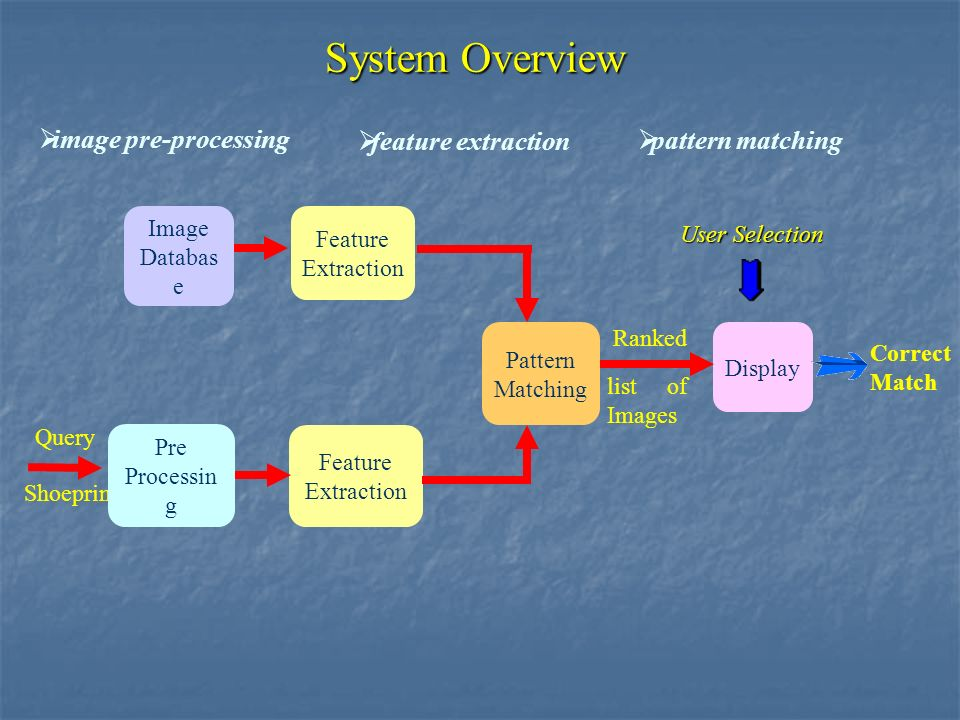 System Overview Feature Extraction Feature Extraction Shoeprint Image Databas e Pre Processin g Query Correct Match Pattern Matching Display Ranked list of Images User Selection image pre-processing feature extraction pattern matching