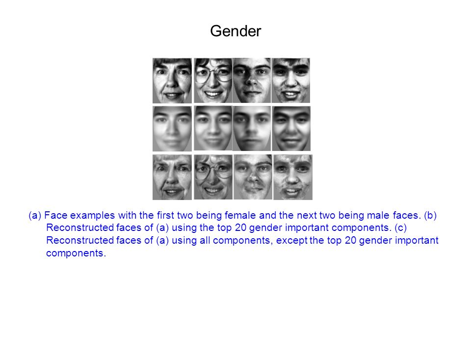 Gender (a) Face examples with the first two being female and the next two being male faces.