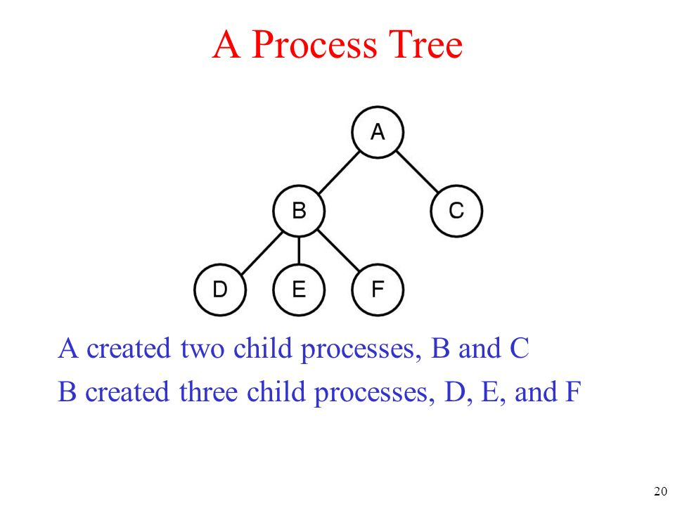 20 A Process Tree A created two child processes, B and C B created three child processes, D, E, and F