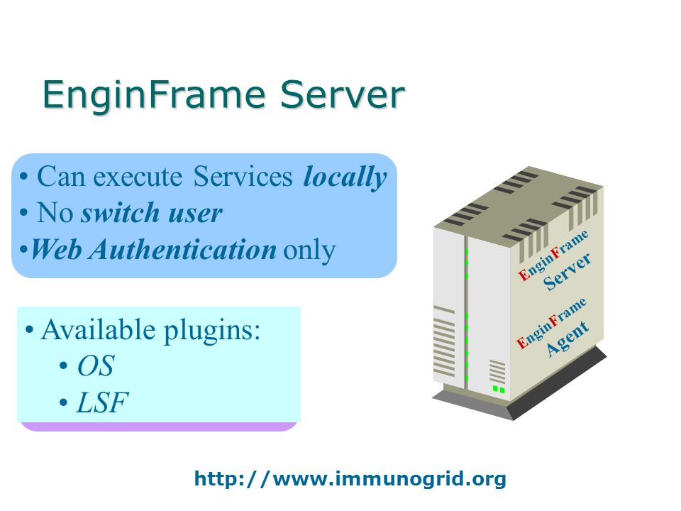 A GRID Engine: EnginFrame EF (EnginFrame) is a Grid solution that provides an interface to applications and services Features Web and Web-Service interface EF-Services can easily wrap system commands: shell scripts, applications etc.