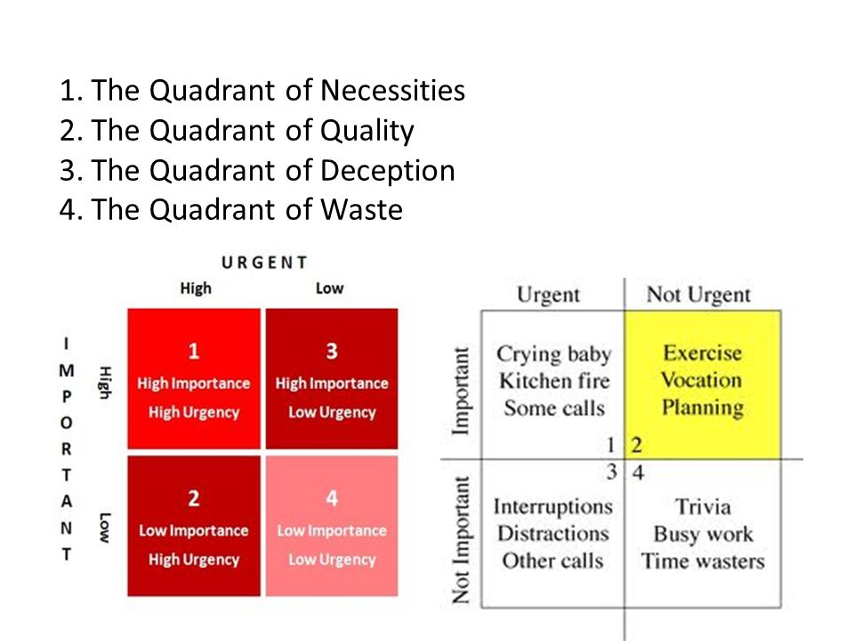1.The Quadrant of Necessities 2.The Quadrant of Quality 3.The Quadrant of Deception 4.The Quadrant of Waste