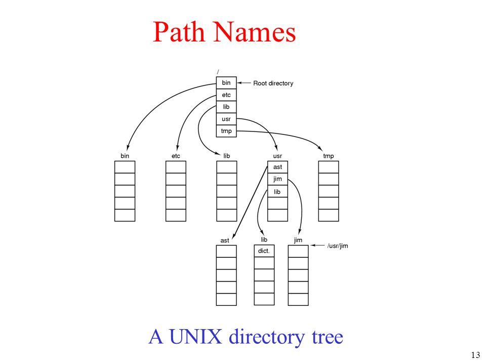 13 A UNIX directory tree Path Names