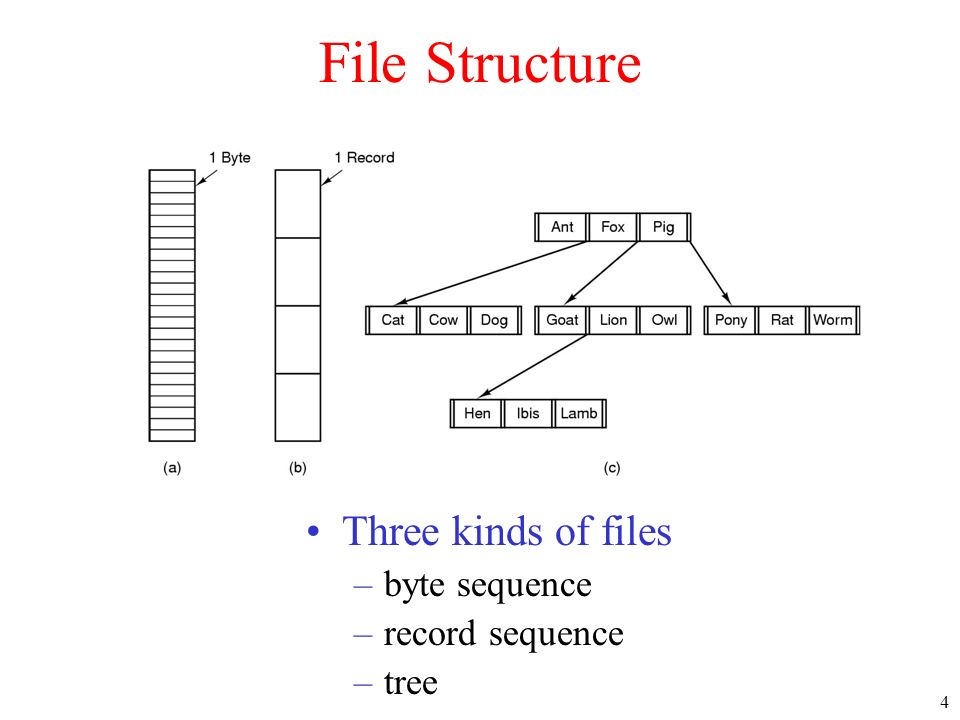 4 File Structure Three kinds of files –byte sequence –record sequence –tree