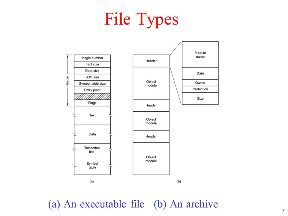 5 File Types (a) An executable file (b) An archive