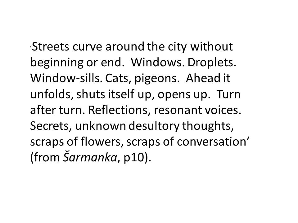 Streets curve around the city without beginning or end. Windows. Droplets. Window-sills. Cats, pigeons. Ahead it unfolds, shuts itself up, opens up. T