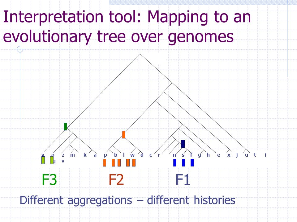 Interpretation tool: Mapping to an evolutionary tree over genomes Different aggregations – different histories y o z m k a p b l w d c r n s f g h e x j u t i q v F3 F2 F1