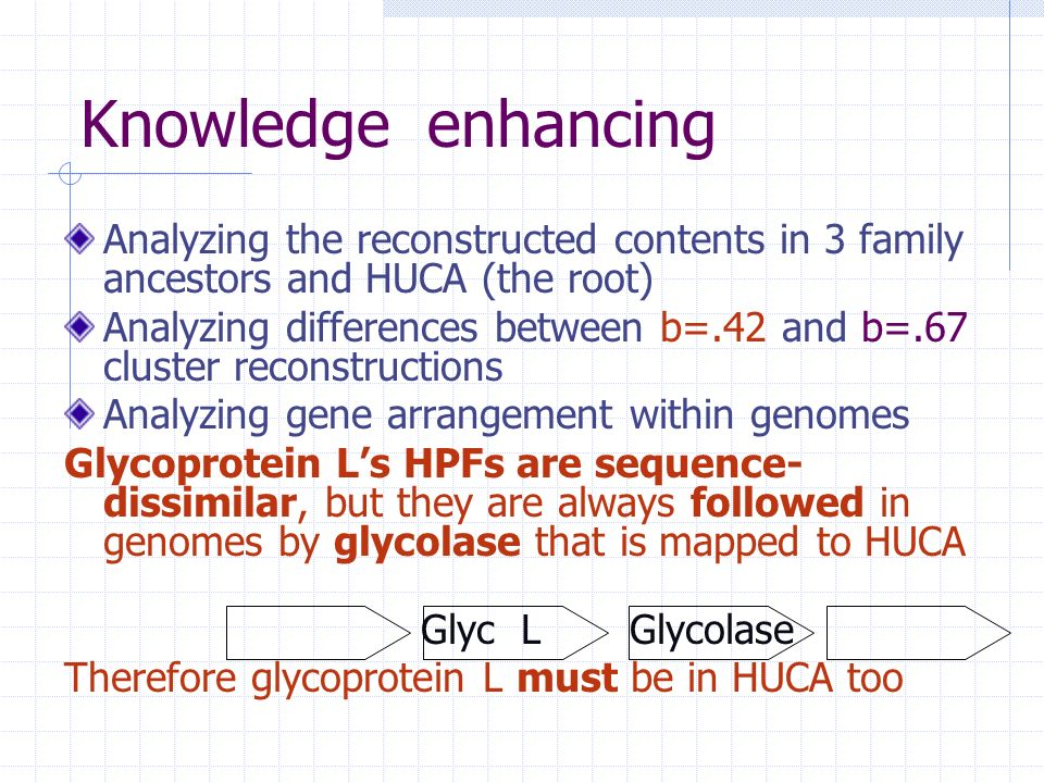 Knowledge enhancing Analyzing the reconstructed contents in 3 family ancestors and HUCA (the root) Analyzing differences between b=.42 and b=.67 cluster reconstructions Analyzing gene arrangement within genomes Glycoprotein Ls HPFs are sequence- dissimilar, but they are always followed in genomes by glycolase that is mapped to HUCA Glyc L Glycolase Therefore glycoprotein L must be in HUCA too