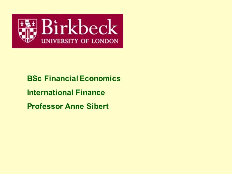 BSc Financial Economics International Finance Professor Anne Sibert
