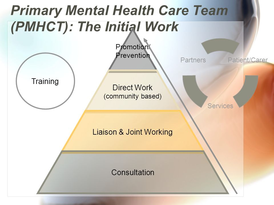 Primary Mental Health Care Team (PMHCT): The Initial Work Promotion/ Prevention Direct Work (community based) Liaison & Joint Working Consultation Training Patient/Carer Services Partners