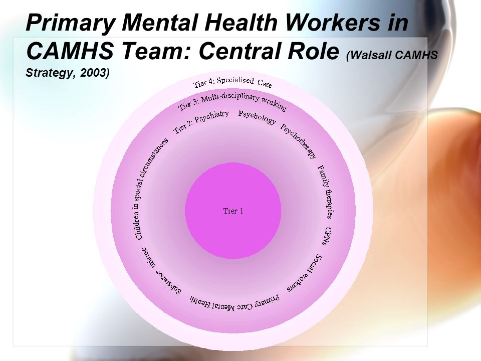 Primary Mental Health Workers in CAMHS: The Nature Senior practitioners.