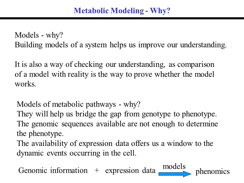 Categorising models according to the interaction between a subsystem and its cellular enviroment.