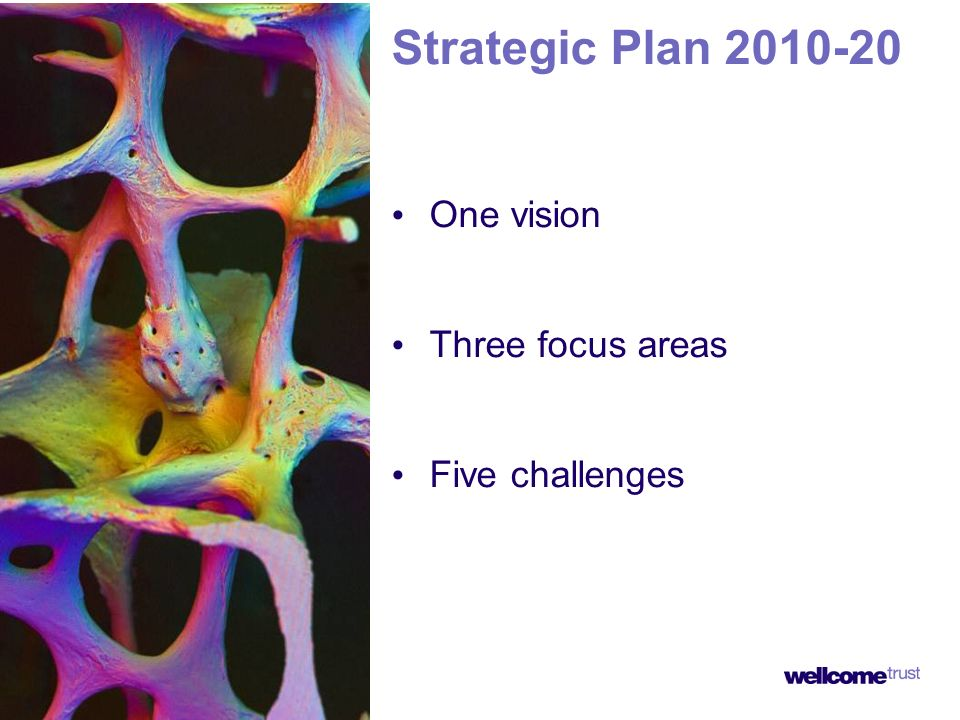 Strategic Plan One vision Three focus areas Five challenges