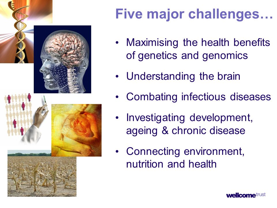 Five major challenges… Maximising the health benefits of genetics and genomics Understanding the brain Combating infectious diseases Investigating development, ageing & chronic disease Connecting environment, nutrition and health