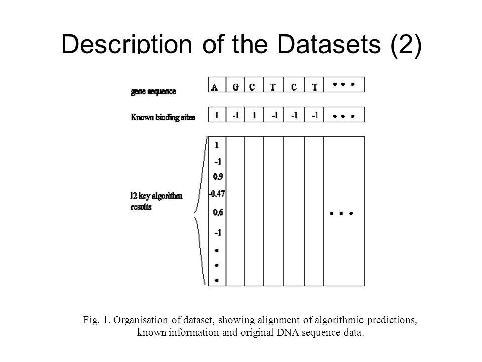 Description of the Datasets (2) Fig. 1.
