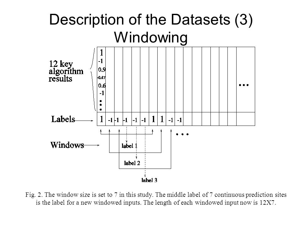 Description of the Datasets (3) Windowing Fig. 2. The window size is set to 7 in this study. The middle label of 7 continuous prediction sites is the