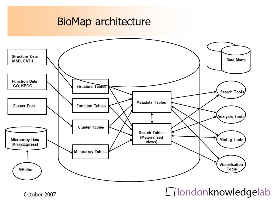 October 2007 BioMap architecture Structure Data MSD, CATH… Function Data GO, KEGG… Cluster Data Microarray Data (ArrayExpress) MEditor Data Marts Structure Tables Function Tables Cluster Tables Microarray Tables Metadata Tables Search Tables (Materialised views) Search Tools Analysis Tools Mining Tools VisualisationTools
