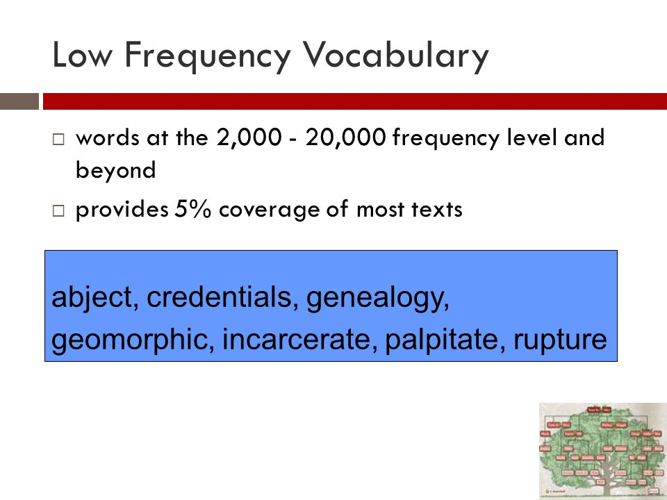 Relevance for teaching EAP Teach the most frequent 2000 words Teach the AWL/sub-technical vocabulary, if students are going on to academic study Teach the technical words of a subject after the first two sets of words have been learned Or learners can/will learn technical words once they begin their subject studies or enter their field of work Teach strategies for low-frequency words