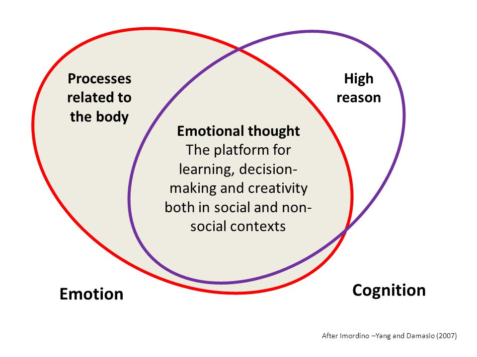 Emotion Cognition Processes related to the body High reason Emotional thought The platform for learning, decision- making and creativity both in social and non- social contexts After Imordino –Yang and Damasio (2007)