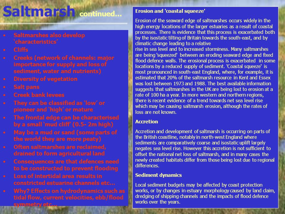 Saltmarsh continued… Saltmarshes also develop characteristics Cliffs Creeks (network of channels: major importance for supply and loss of sediment, wa