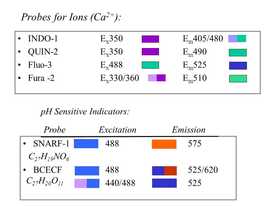 Probes for Ions (Ca 2+ ): INDO-1 E x 350E m 405/480 QUIN-2E x 350E m 490 Fluo-3 E x 488E m 525 Fura -2E x 330/360E m 510 pH Sensitive Indicators: SNARF-1488575 BCECF488525/620 440/488525 ProbeExcitation Emission C 27 H 20 O 11 C 27 H 19 NO 6