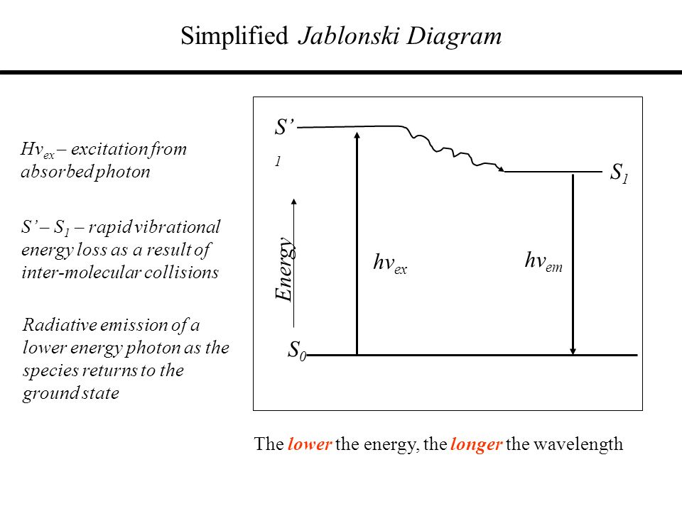 Simplified Jablonski Diagram S0S0 S1S1 Energy S1S1 Hv ex – excitation from absorbed photon hv em The lower the energy, the longer the wavelength hv ex