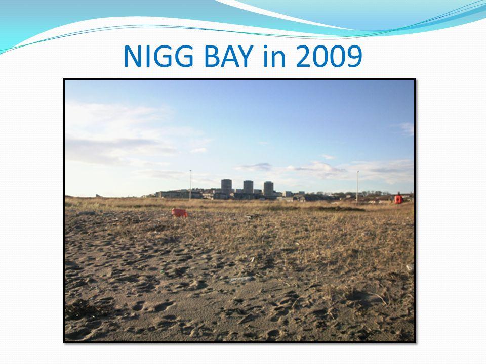 NIGG BAY in 2009