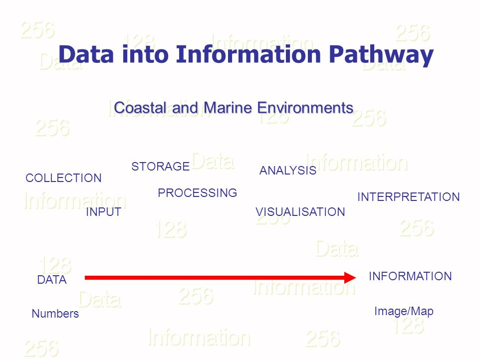 Data into Information Pathway DATA INFORMATION COLLECTION INPUT STORAGE PROCESSING ANALYSIS INTERPRETATION VISUALISATION Numbers Image/Map Coastal and Marine Environments