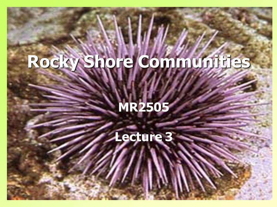 Rocky Shore Communities MR2505 Lecture 3
