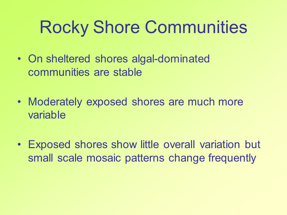 On sheltered shores algal-dominated communities are stable Moderately exposed shores are much more variable Exposed shores show little overall variati