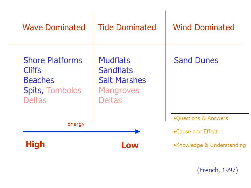 Wave Dominated Tide Dominated Wind Dominated Shore PlatformsMudflatsSand Dunes CliffsSandflats BeachesSalt Marshes Spits, TombolosMangrovesDeltas High